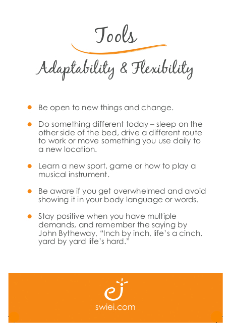 Adaptability and Flexibility Tools Clean